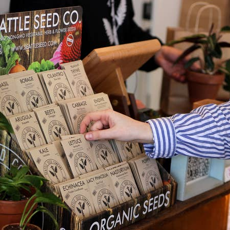 Seattle Seed Display