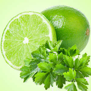 Cilantro Lime Dip Mix