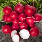 Radish (Cherry Belle) Organic Seeds